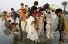 Việt Nam tham gia cứu trợ khẩn cấp cho Pakistan