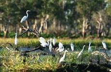 525 tỷ đồng phát triển ba khu bảo tồn thiên nhiên