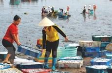 Hội thảo tăng cường hợp tác thương mại Việt-Bỉ