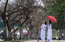 Ra mắt ấn phẩm khắc họa chân dung người Hà Nội