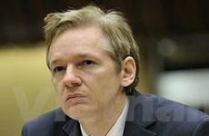 Julian Assange bị Mỹ chỉ trích là phần tử khủng bố