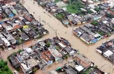 Nam Phi bị ngập lụt trên diện rộng do mưa lớn