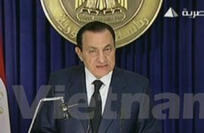 Ban lãnh đạo Đảng cầm quyền tại Ai Cập từ chức