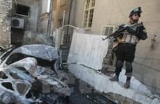 Đánh bom liều chết ở Iraq, 75 người thương vong