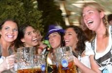 Mức thạch tín của các loại bia Đức không vượt chuẩn