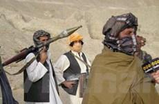 Cảnh sát Afghanistan bắt giữ năm kẻ khủng bố