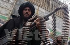 Afghanistan tiêu diệt chỉ huy quan trọng của Taliban