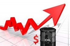 Giá dầu mỏ quay đầu tăng trên 76 USD mỗi thùng