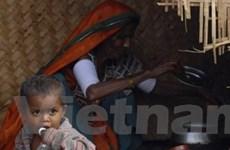 Khởi động chiến dịch xóa đói nghèo trên Internet