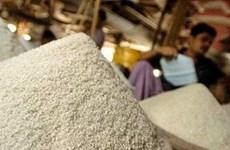 Giá thóc gạo có thể tăng 7% trong thời gian tới