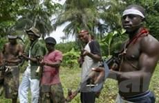 Phiến quân Nigeria bắt cóc trẻ em đòi tiền chuộc