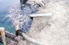"""""""Loạn"""" doanh nghiệp xả nước thải bẩn ở Bình Dương"""