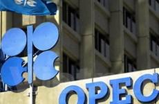 OPEC dự báo nhu cầu dầu thế giới 2010 tăng nhẹ