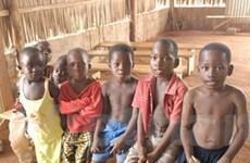 IMF và WB xóa hơn 80% nợ nước ngoài cho Togo