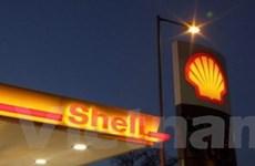 Shell lập liên doanh sản xuất nhiên liệu sinh học