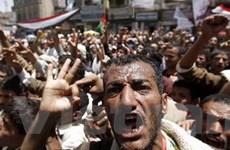 Hàng nghìn người Yemen thương vong vì bạo động