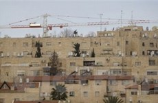 Mỹ-Israel thúc đẩy tiến trình hòa bình Trung Đông