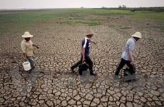Hạn hán tại Trung Quốc nặng nề nhất 50 năm qua