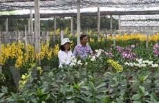 Khu nông nghiệp công nghệ cao lấp đầy diện tích