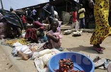 Hỗ trợ người dân nghèo Cote d'Ivoire qua điện thoại