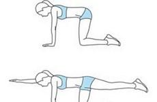 15 phút mỗi ngày với tám động tác cho vòng eo đẹp