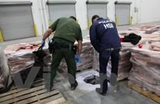 Mỹ phát hiện đường hầm lớn ở biên giới với Mexico
