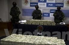Mexico thu giữ 15,3 triệu USD trong xe tải vô chủ