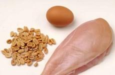 Tăng cường tiêu thụ protein để có cơ bắp chắc khỏe
