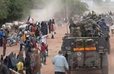 Pháp đề nghị sớm triển khai quan sát viên tới Mali
