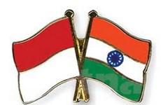 Indonesia và Ấn Độ tăng cường hợp tác Nam-Nam