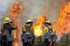 Mỹ sa thải nhân viên cứu hỏa do cắt giảm ngân sách
