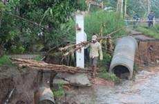 Sạt lở bờ kè ven sông Cần Thơ làm giao thông tê liệt