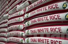Gạo Thái Lan bị nghi ngờ nhiễm độc thuốc trừ sâu