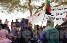 Dư luận hoan nghênh cuộc bầu cử tổng thống Mali