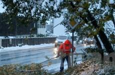 Tuyết rơi sớm đã gây náo loạn miền Nam nước Đức