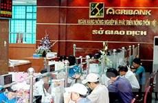 Agribank quản 65 triệu USD vốn ngành chăn nuôi