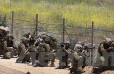 Lính Israel bắt giữ 12 người Palestine ở Bờ Tây