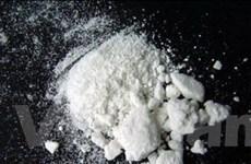 Bỉ thu giữ hơn 1,2 tấn cocain tại cảng biển Anvers