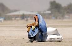 FAO: Tốc độ giảm đói nghèo ở Mỹ Latinh chững lại