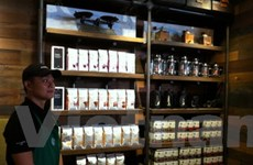 Starbucks cam kết sử dụng nhiều càphê từ Việt Nam