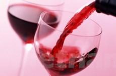 Biến đổi khí hậu có lợi cho ngành rượu vang của Áo