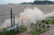 Có một người chết và ba người mất tích do bão số 6