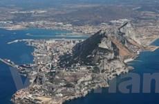 TBN yêu cầu Gibraltar làm sáng tỏ cáo buộc ở LHQ
