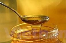 """Mật ong - """"Khắc tinh"""" của vi khuẩn nhờn thuốc"""