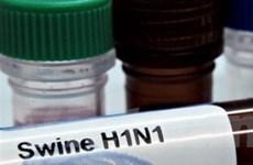 3 công ty lớn của Mỹ sản xuất vắcxin phòng cúm