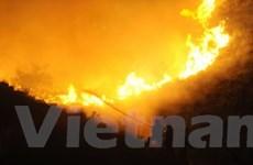 Cháy rừng vẫn hoành hành dữ dội ở châu Âu