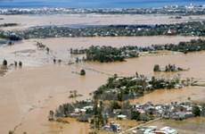 Nga và Dominicana chia buồn với nạn nhân bão