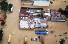 Gần 200 người thiệt mạng do lở đất ở Philippines