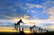 Giá dầu thế giới đã tăng lên xấp xỉ 82 USD/thùng