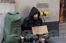 Liên hợp quốc điều tra tình trạng vô gia cư ở Mỹ